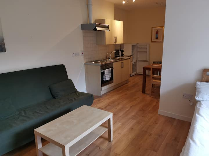 Donnybrook D4 Studio (4) Close UCD & St Vincents