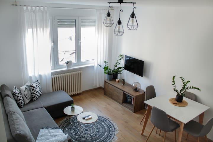 Bright 1-bedroom apartment in heart of Belgrade