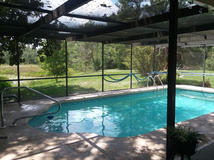 Pool in screen porch with view of the pond and woods in back yard