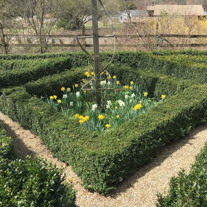 The French maze in the spring...