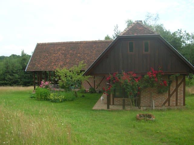 Bluebutterfly guesthouse in Őrség - Kétvölgy - House