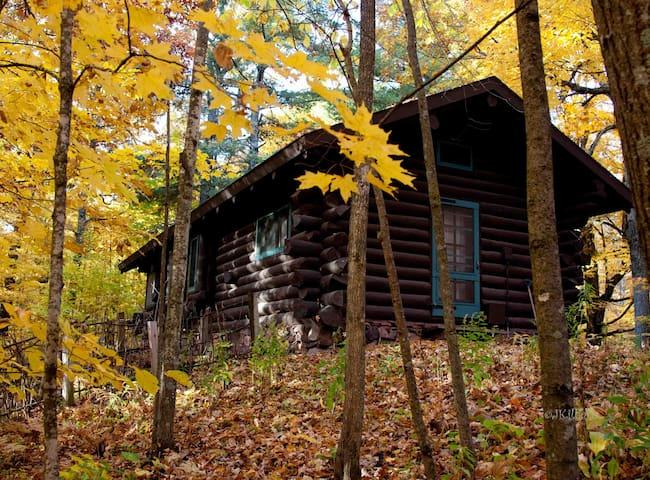 Hunt Hill Log Cabin - Sarona