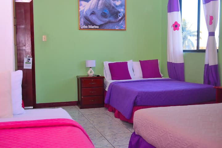 Hostal Tintorera. Suite # 7