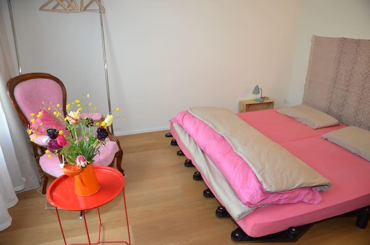2-room apartment close to Kannenfelpark (1459)