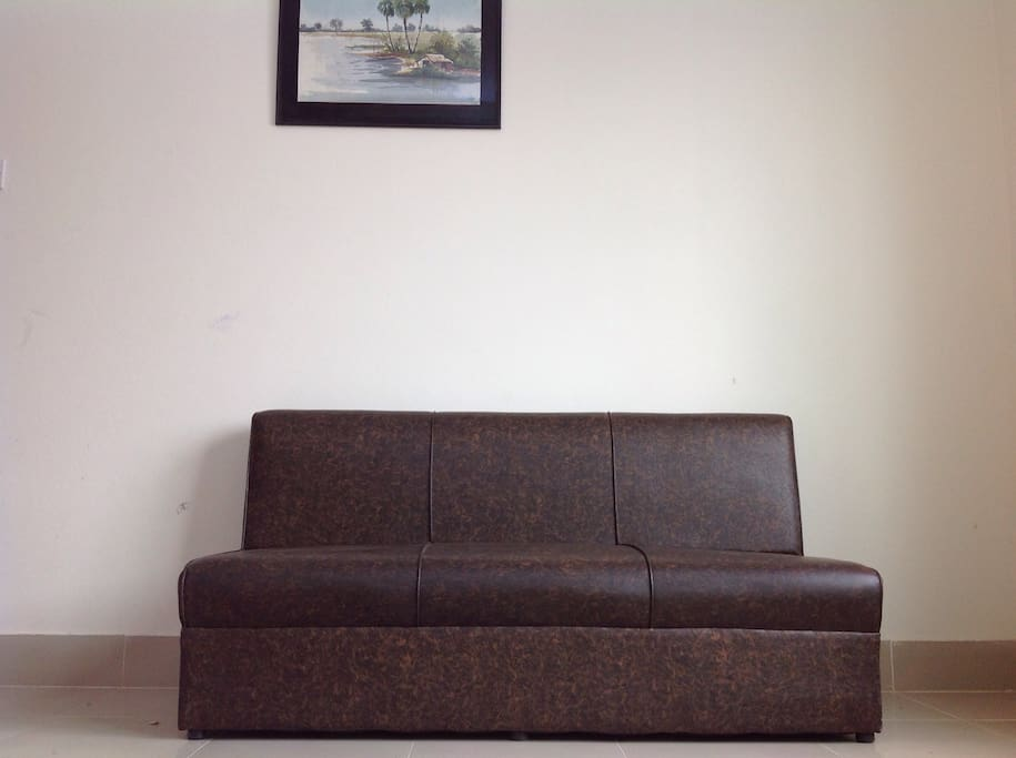 couch on living room.