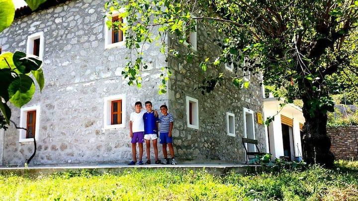 Biba guest house