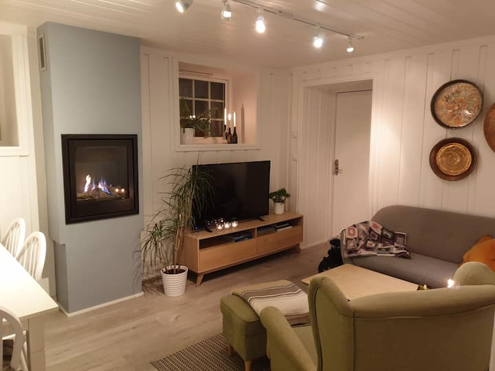 Sentralt beliggende leilighet i Lillehammer