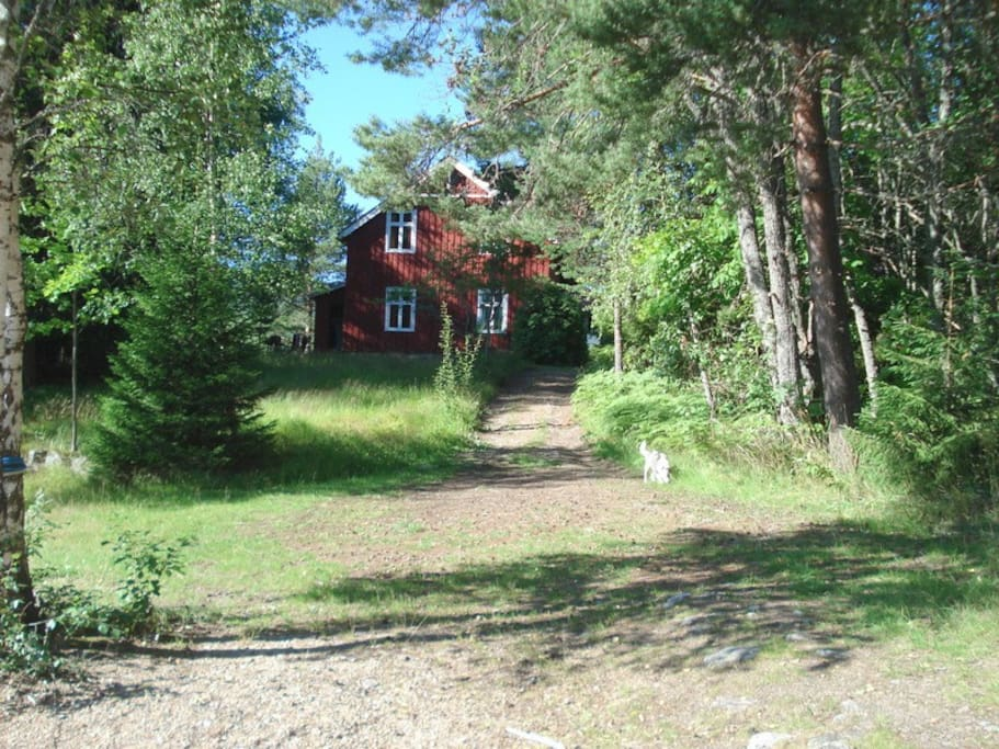 huset set fra søen / the house from lake