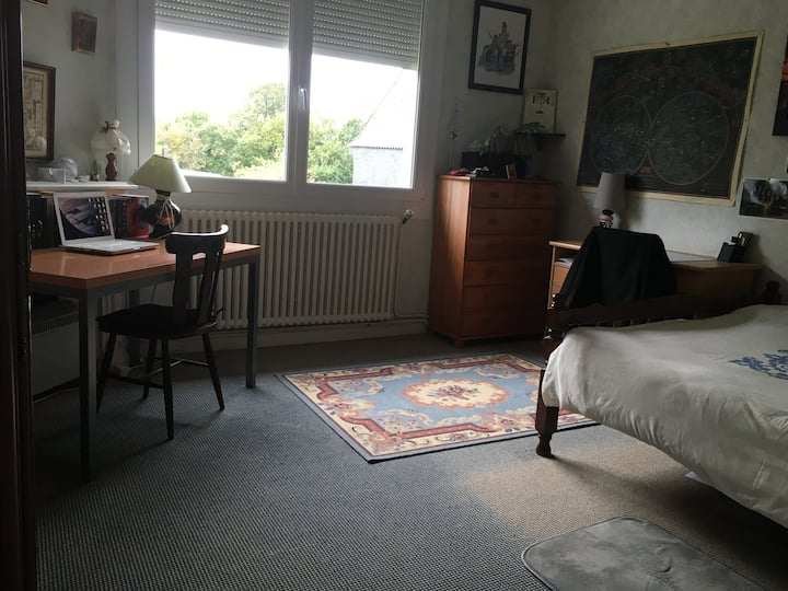 Belle chambre ensoleillée.