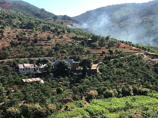 OVi Coffee FarmStay ( O.Vi )