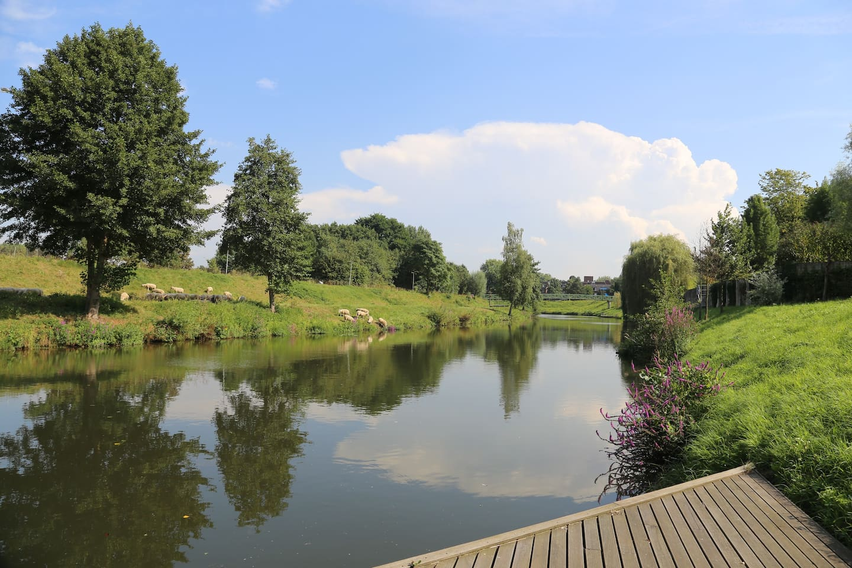 Onze stijger geeft toegang tot het Midden-Limburgse Maasplassen gebied. Een groot watersportgebied met jachthavens en dagstranden. Maak gebruik van de privé visstek of geniet van deze unieke plek met een glas wijn.