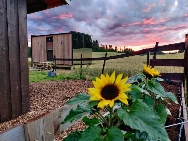 The WonderInn Farm Bed&Breakfast - Cabin Boho