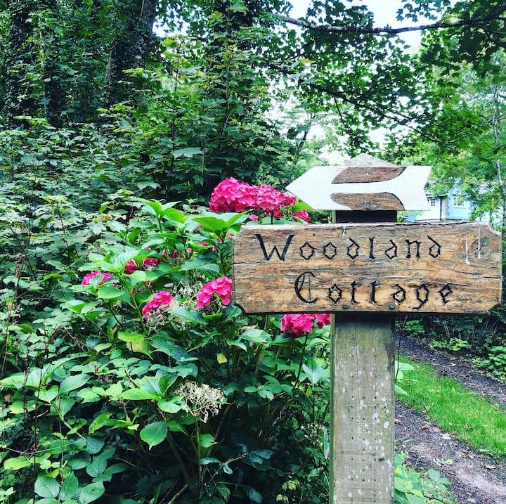 Welsh Woodland Cottage