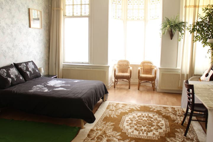 Spacious and Bright Room in the Central Area