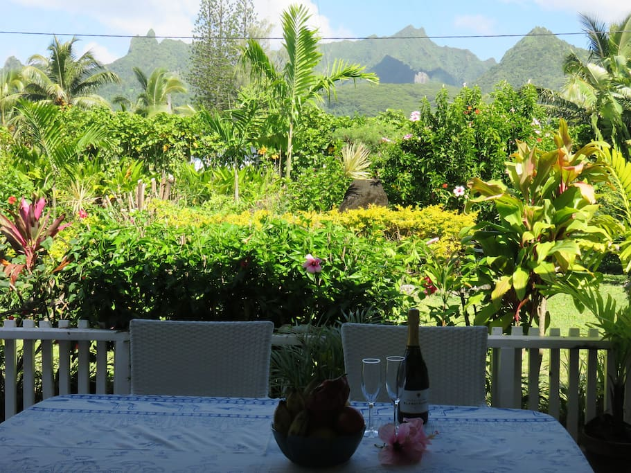 View from veranda dining