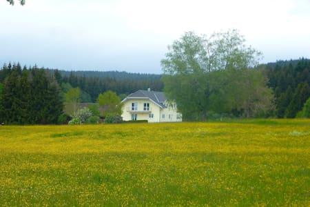 Theres 4411.1 - Bräunlingen - Pis