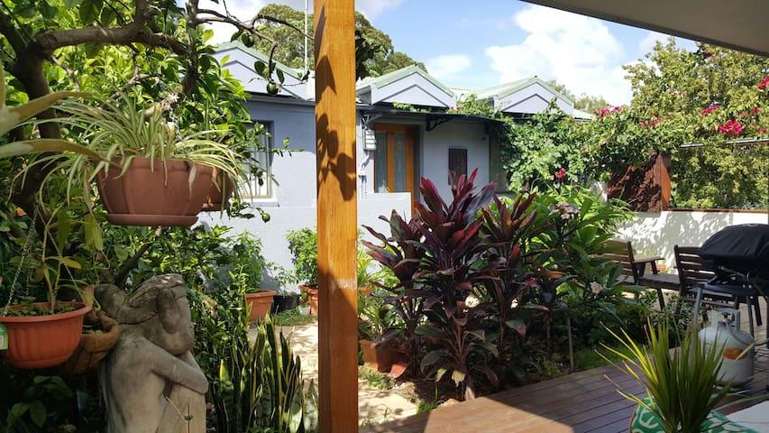 Sunny courtyard flat in Marrickville
