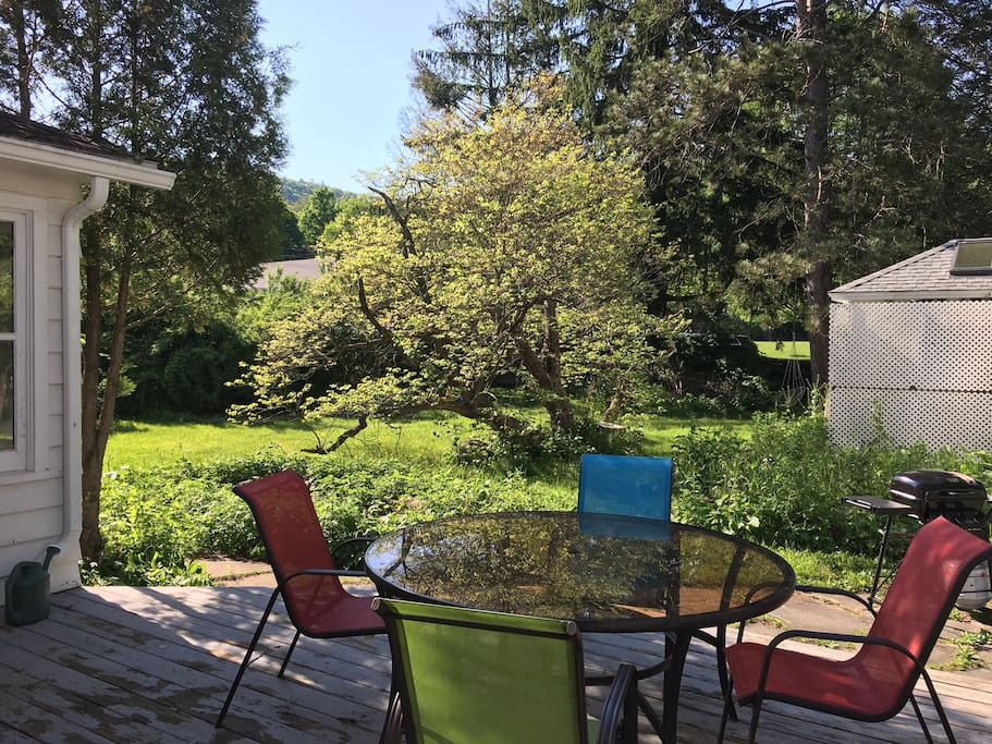 Wonderful back yard with deck , gas grill and plenty of seating