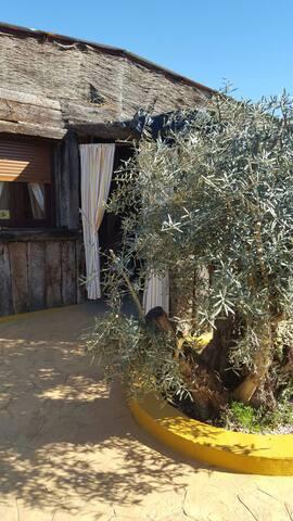 Mini Finca in Andalusien bei Granada - Loja - Mökki