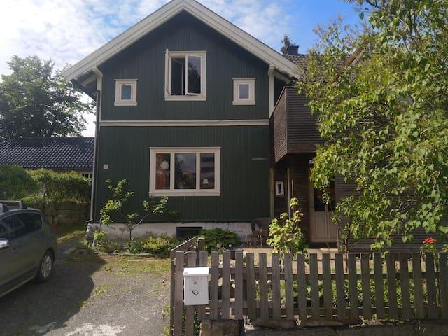 Grønnhuset V/Hamar park