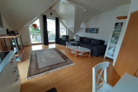bright cozy apartment near Sinsheim and Heidelberg