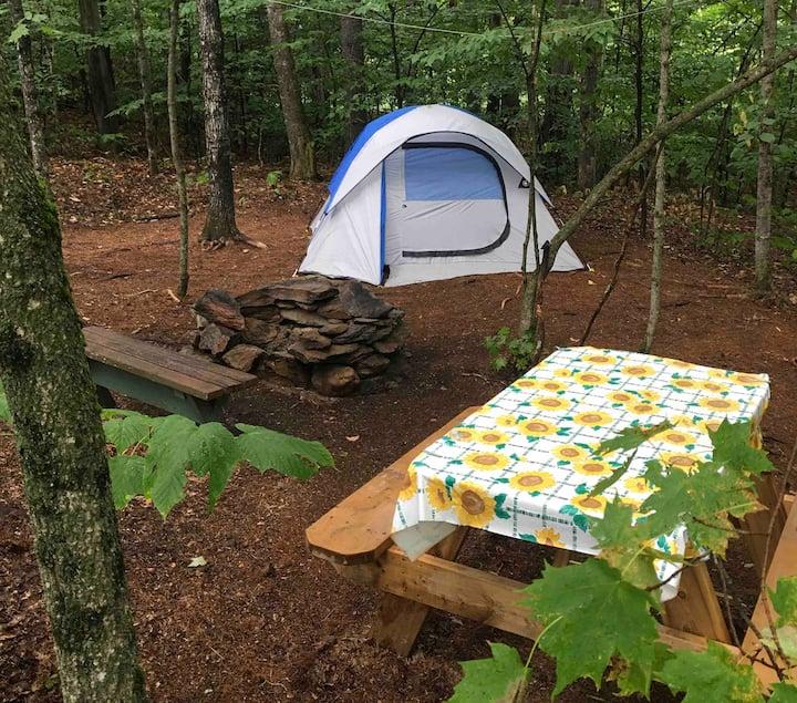 Captain Woodbury Tentsite (tent only)