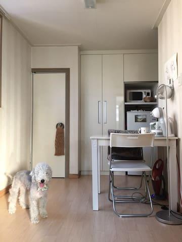 귀여운 강아지가 함께있는 테라스 원룸