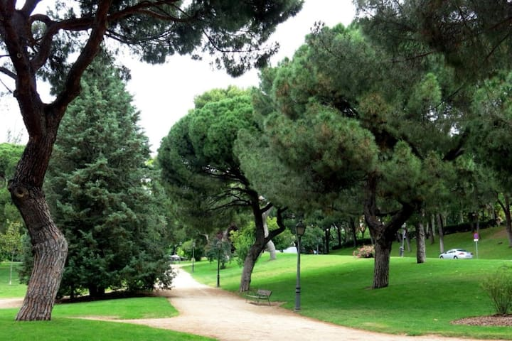 Excellent location, relaxing green area, metro.
