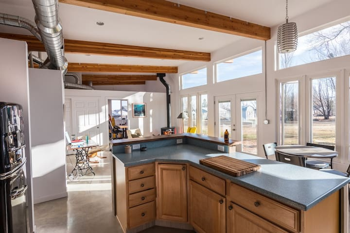 New, Mod Home in North Fort Collins
