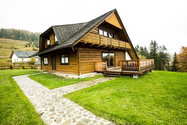 Willa Miodula - Wisła - บ้าน