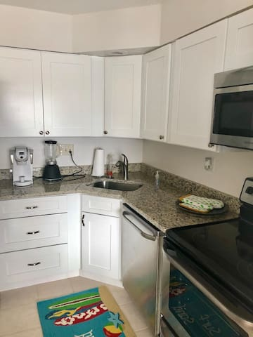 Beautiful New One Bed Condo - 2nd fl-