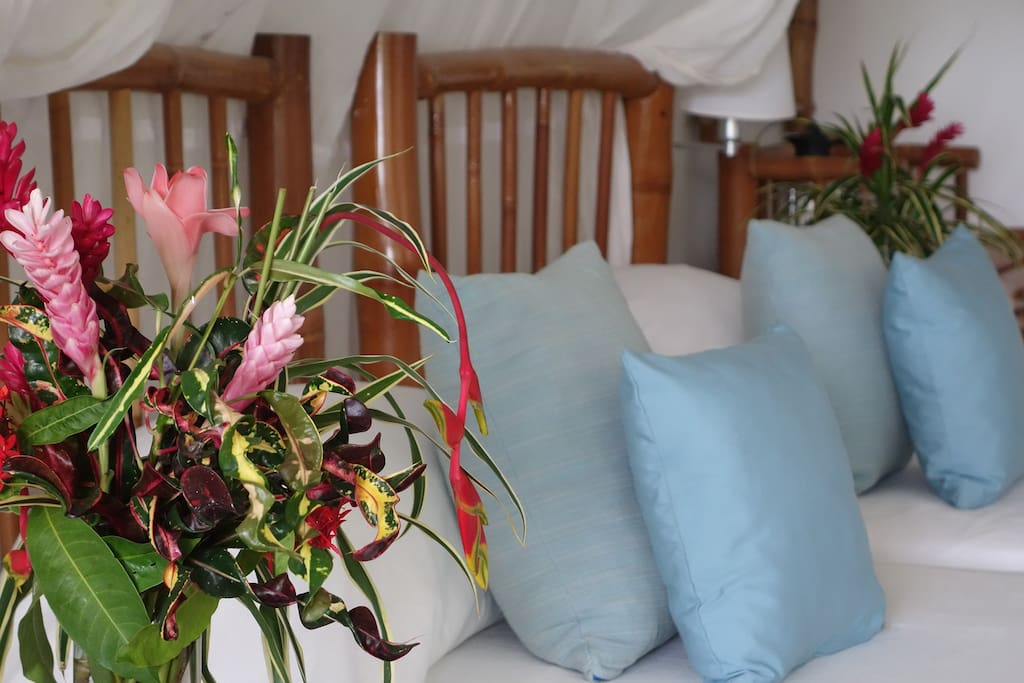 Comfy Garden View Room