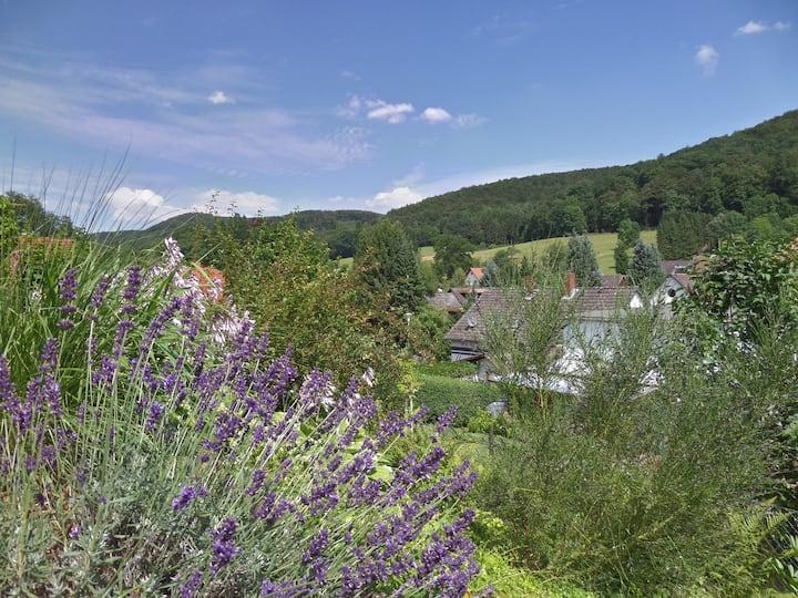 Fewo Waldblick - hell, modern und naturnah