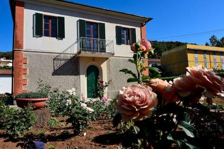 In Villa Appartamento Glicine a 100 mt dal mare