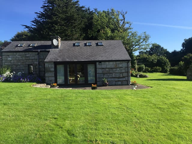 The Studio - A pretty cottage nr Blessington lakes - Blessington - 통나무집