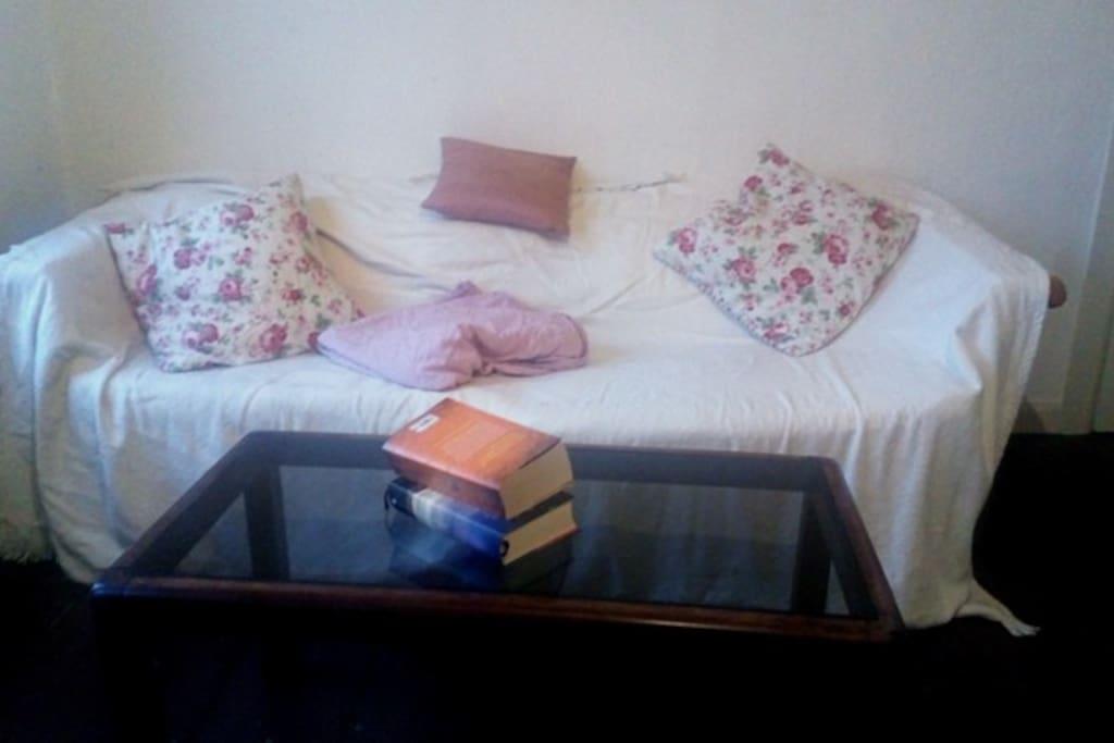 Die Couch lädt zum Verweilen ein und Platz für einen weiteren Schlafgast.