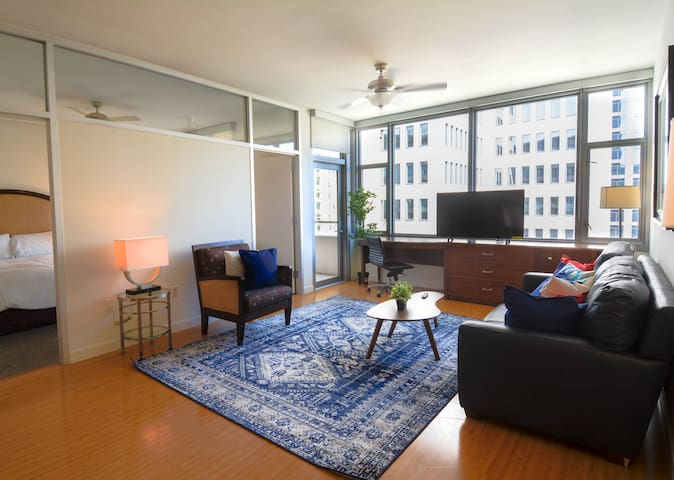 Magnetic 1 Bedroom Apartment in Downtown Dallas