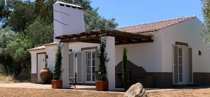 Casa do Governador - Villa t1