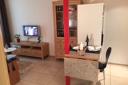2-Zimmer-Wohnung bei Interlaken,rot - Meiringen