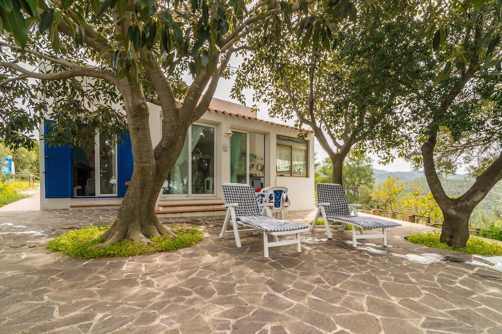 Maison avec jardin maisons louer maracalagonis for Jardin d italie chateauroux