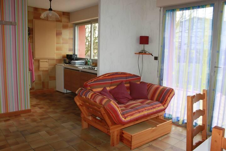 salon avec canapé-couchage 1 p