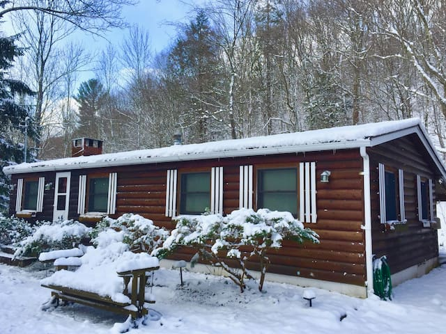 Gorgeous Creekside View! Log Cottage with Sunroom! - Big Indian