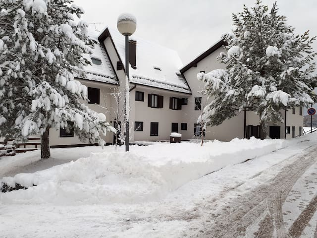 Trentino Val di Fiemme  Carano  appartamento 6 pt