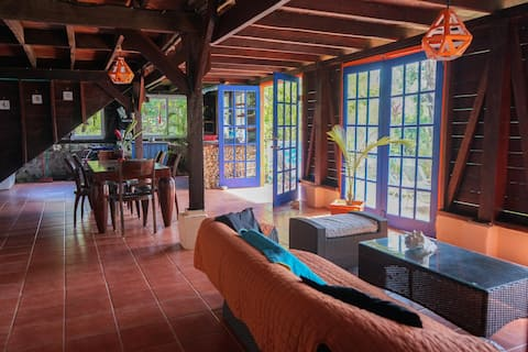 ocean front very spacious 2bd suite in guesthouse