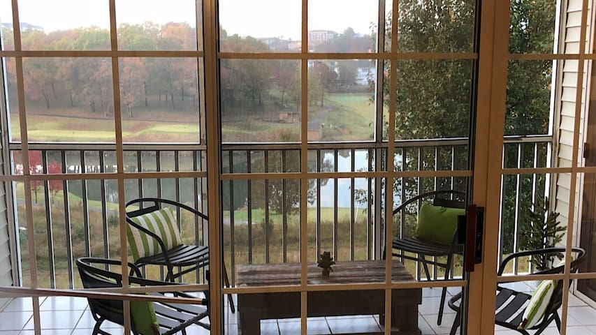 REMODELED NO STEPS in HEART of BRANSON. Pond view!