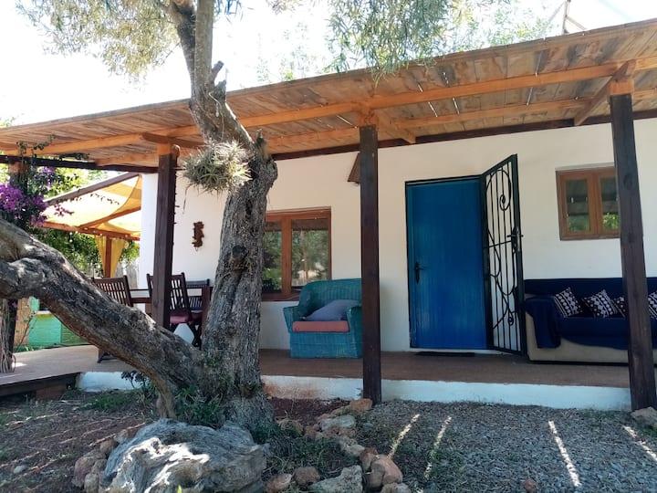 Ecology countryside house ETV2375E