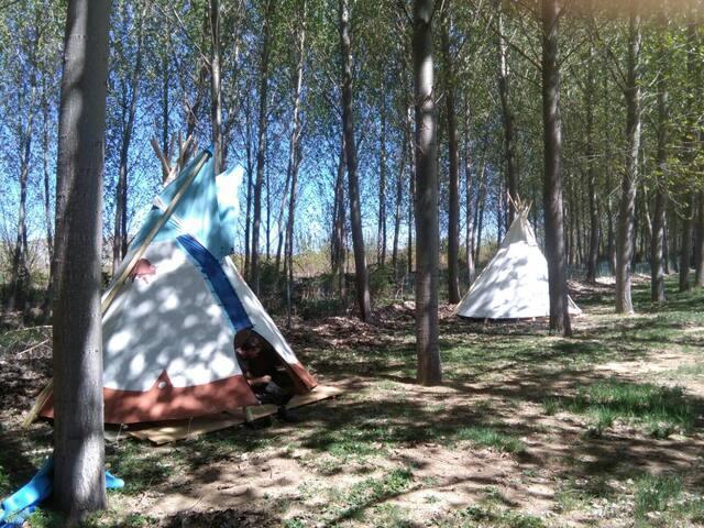 Tipi iowa albergue Berlanga - Berlanga de Duero - Tenda Indígena
