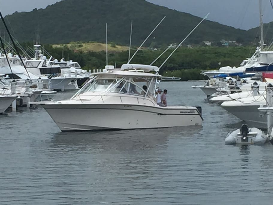 Grady White 33 Fishing Charter/Beach Tours at Puerto del Rey. Please ask for details.