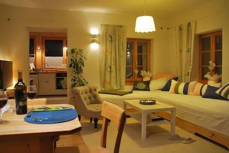Sonniges, familienfr. Apartment, Nähe Nassfeld - Obervellach - Flat