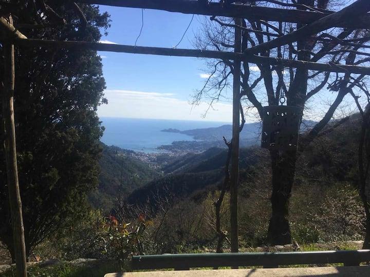 Vista Portofino Citra 010046- LT-0595